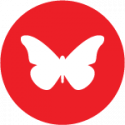 Image of a butterfly on a red circle, indication freedom of movement for works, a recently voted plank in Seattle DSA's platform.